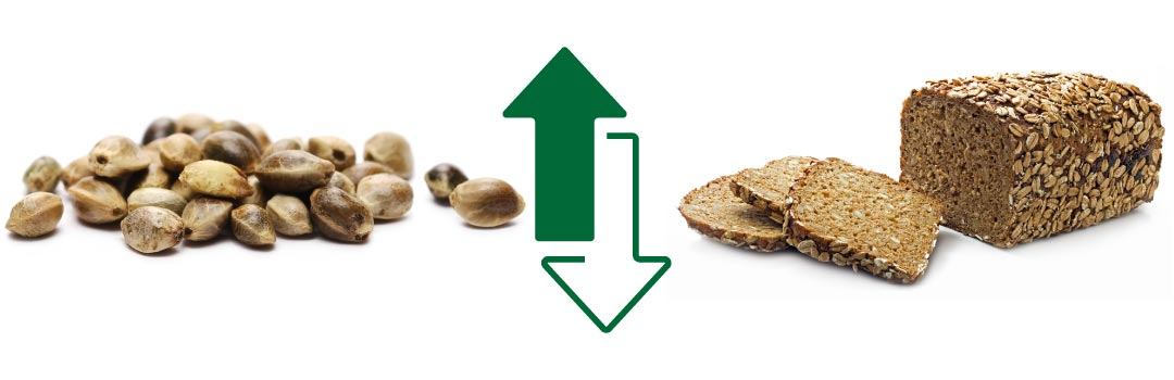 What is the Best Vegan Protein? Hemp Seed & Sprouted Grain Bread  - AGN Roots Grass-Fed Whey
