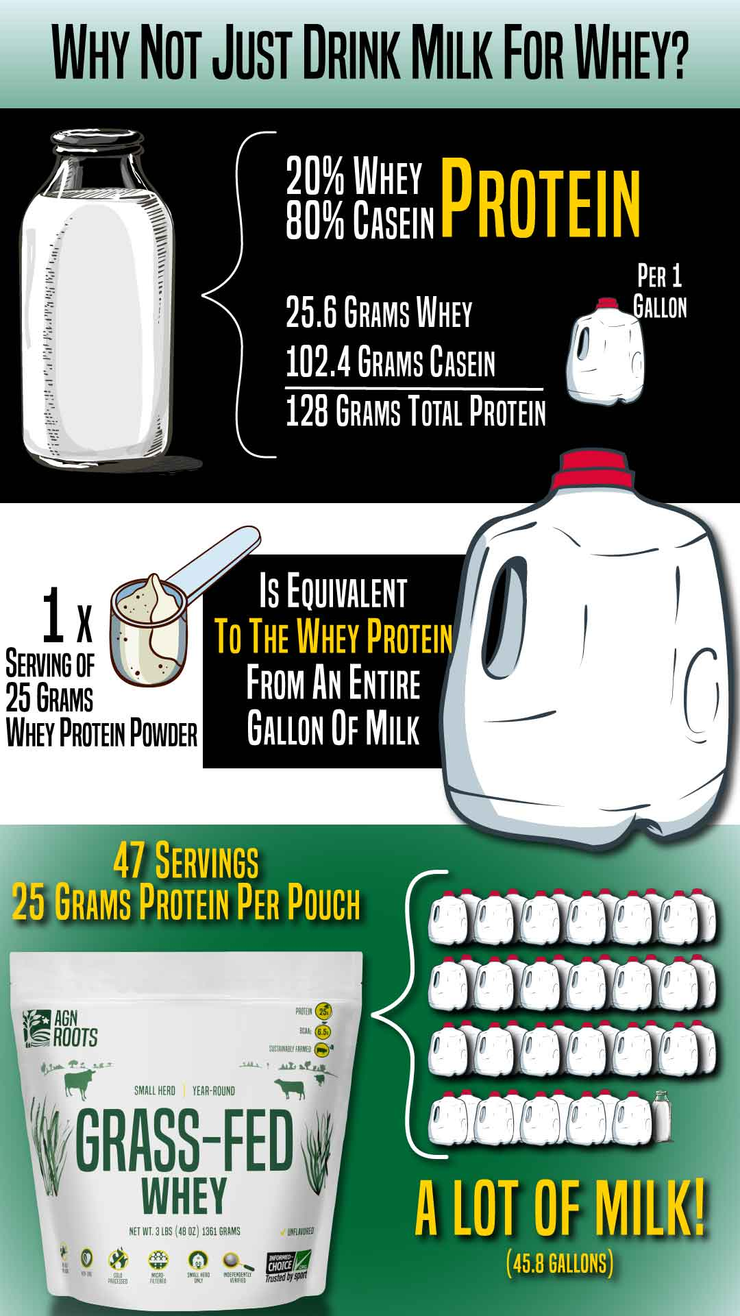 Whey Protein Powder Vs. Milk Infographic