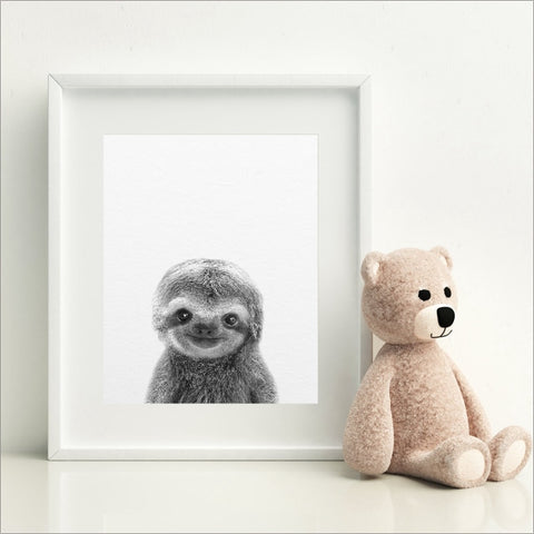 Image of Cute Baby Sloth Poster - Sloth Gift shop