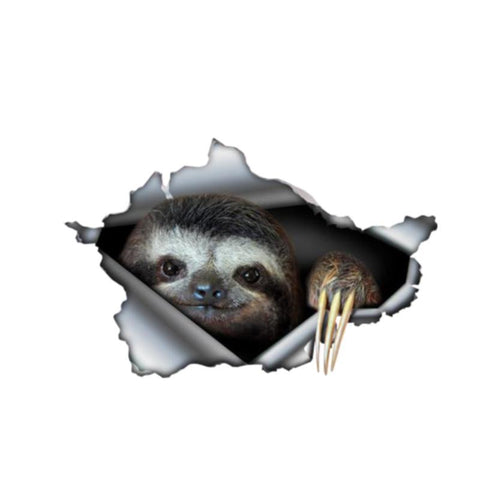 Watching Sloth Sticker - Sloth Gift shop
