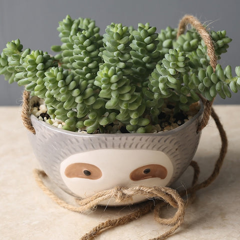 Image of Round Sloth Flowerpot - Sloth Gift shop