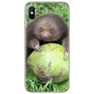 Coconut Sloth Samsung Galaxy Case