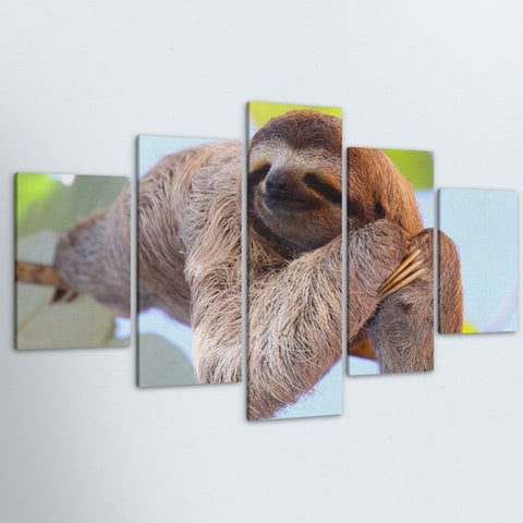 Image of Sleeping Baby Sloth Poster - Sloth Gift shop
