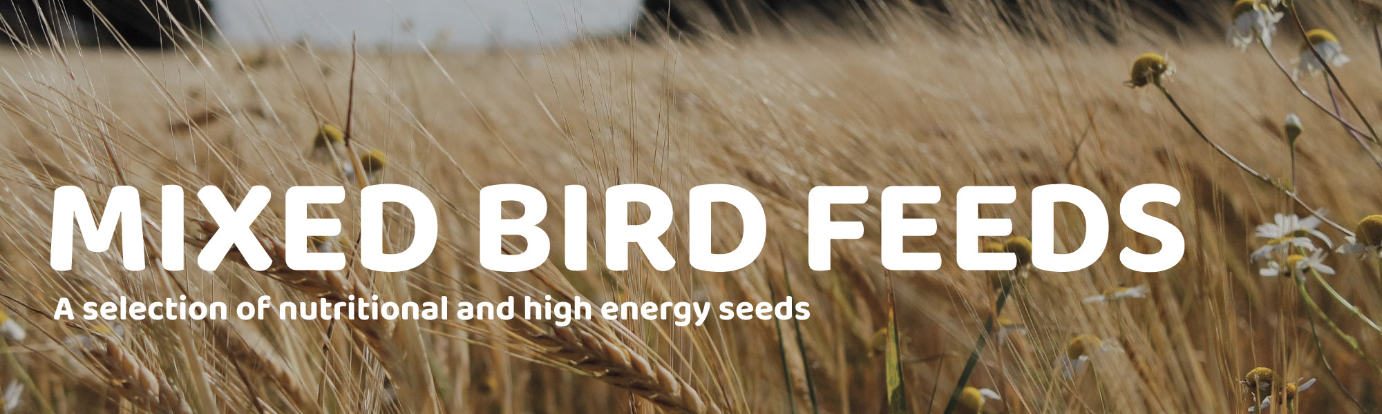 Mixed Bird Feeds - A selection of nutritional and high energy seed