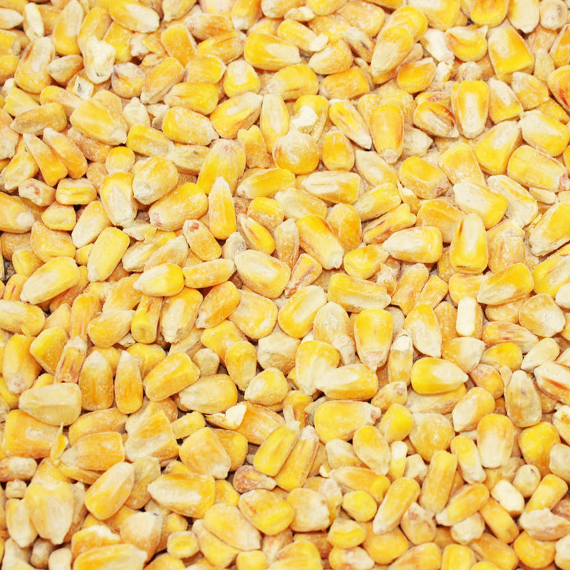 20kg Whole Maize