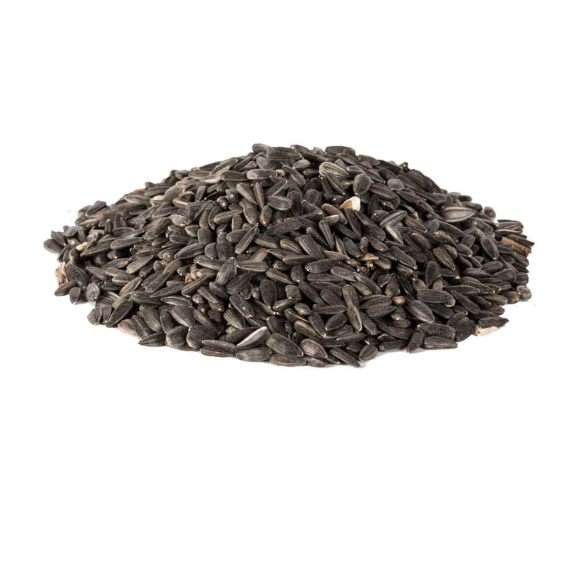 12.75kg bag of Black Sunflower Seed