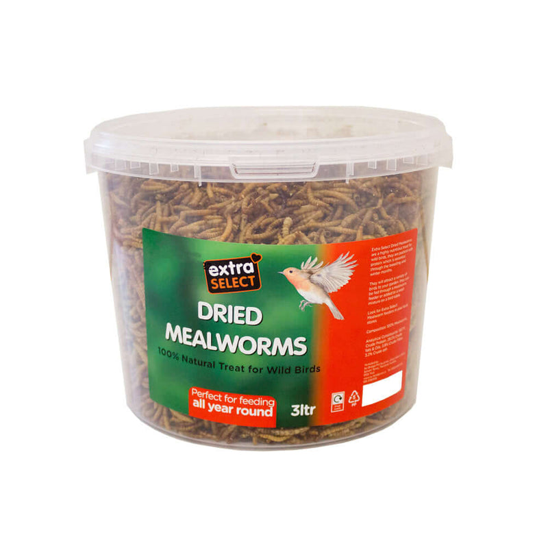 Extra Select Mealworms in a tub 1 litre