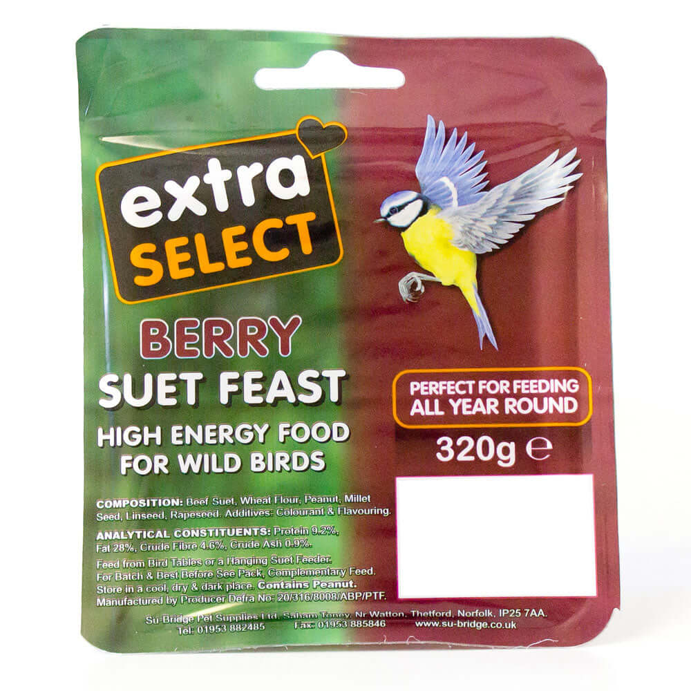 Extra Select Berry Suet Block for wild birds
