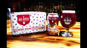 Big Ditch Brewing Berry Vision 12 oz Can