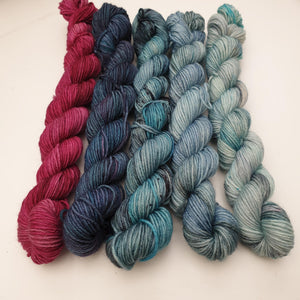 Cool Mini Set (5 x 20g). Merino Nylon 4-ply/fingering