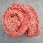 Load image into Gallery viewer, OOAK Salmon. Merino Nylon DK