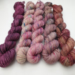Load image into Gallery viewer, Warm Mini Set (5 x 20g). Merino Nylon 4-ply/fingering