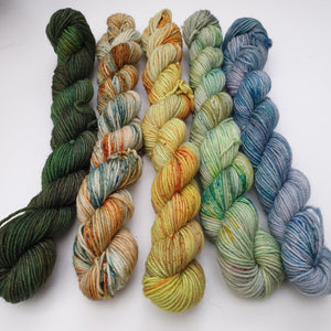 Zest Mini Set (5 x 20g). Merino Nylon 4-ply/fingering