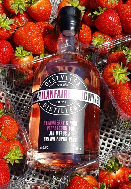 LlanfairPGin Anglesey Gin