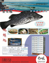 Load image into Gallery viewer, Frozen Barramundi Fish Whole (1 Pack) - 頂級鮮凍三去金目鱸魚(1包1條)