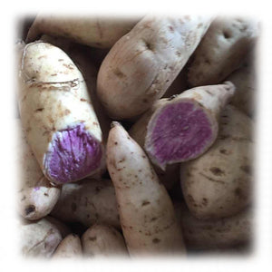 Ube Purple Yam (3lbs per bag)