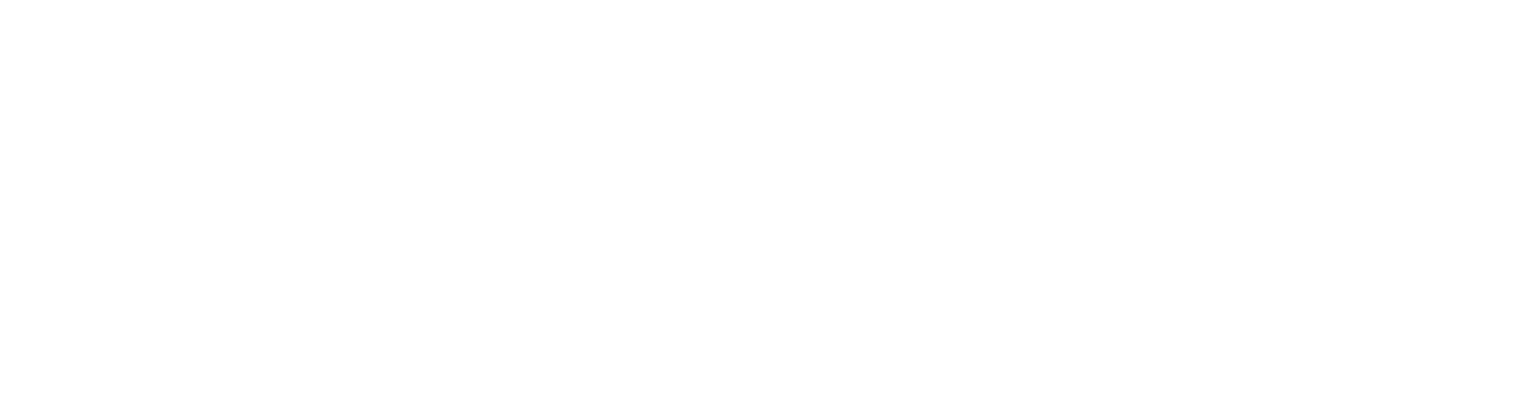 Original Stash Logo