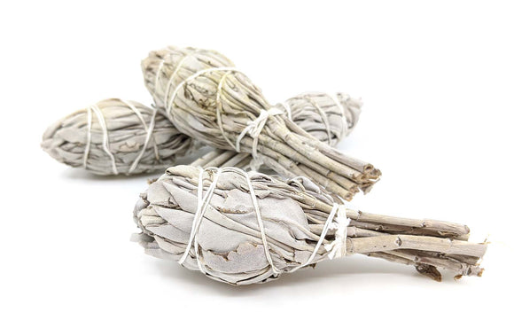 Baby White Sage Smudge Bundle