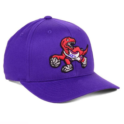 Toronto Raptors Purple Mitchell & Ness Hardwood Classic Flexfit Hat