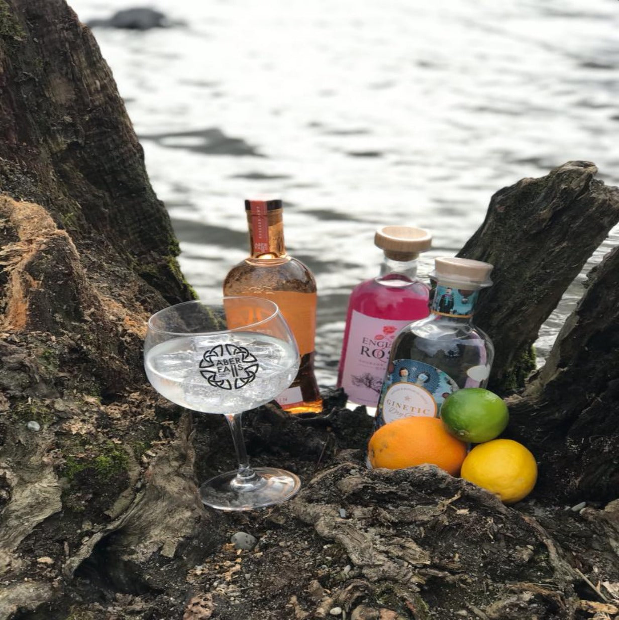 Citrus Gin Bundle