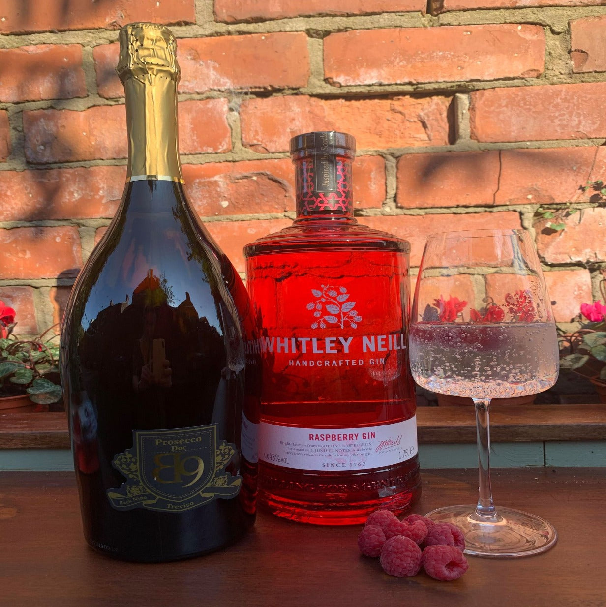 Gin Fizz Deal - Whitley Neill Raspberry 1.75L and B9 1.5L Magnum of Prosecco