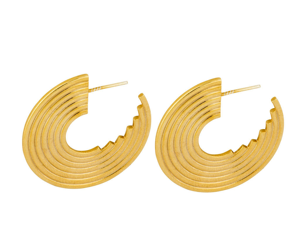 Spectrum Hoops - Gold Polished