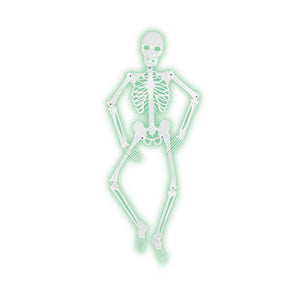 Beistle Party Decoration Mr Bones-A-Glo Skeleton 5' - 6 Pack (1/Pkg)