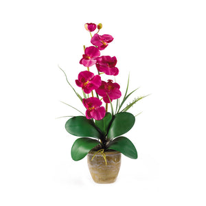 Nearly Natural 1016-BU Phalaenopsis Silk Orchid Flower Arrangement, Beauty,9x6x21