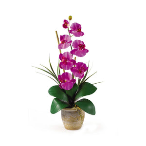 Nearly Natural Single Stem Phalaenopsis Silk Orchid Arrangement Orchid
