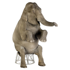 Asian Elephant Standup Cardboard Cutout