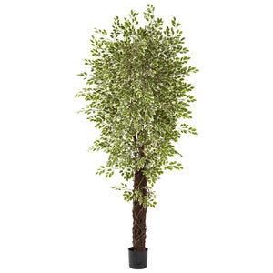 Nearly Natural 5431 Variegated Mini Ficus with 4131 Leaves, 7.5-Feet,Multi Color