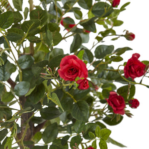 Nearly Natural 5964 4.5  Rose Topiary with Farmhouse Planter