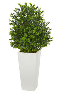 "Nearly Natural Artificial Plant in White Sweet Grass in Tower Planter (Indoor/Outdoor), Green,17""Dx17""Wx33""H"