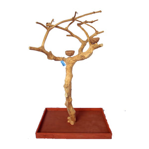 A&E Cage Company AE250S Java Wood Tree