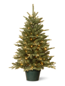 National Tree 3 Foot Everyday Collections Tree with 100 Clear Light in Green Pot (ED3-307-30)