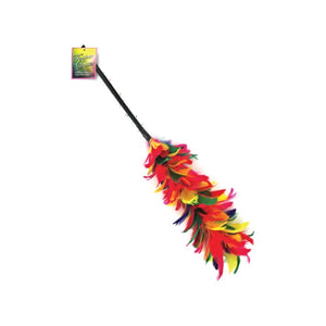Feather Duster Pack 24