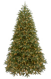 6.5 ft. Jersey Fraser Fir Medium Tree with Dual Color LED Lights