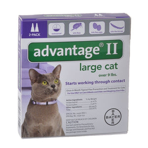 Flea Control for Cats and Kittens Over 9 lbs 2 Month Supply