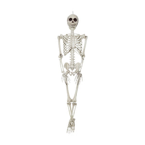 Global Trend Innovations Halloween Decoration Prop Hanging Skeleton 36 Inch