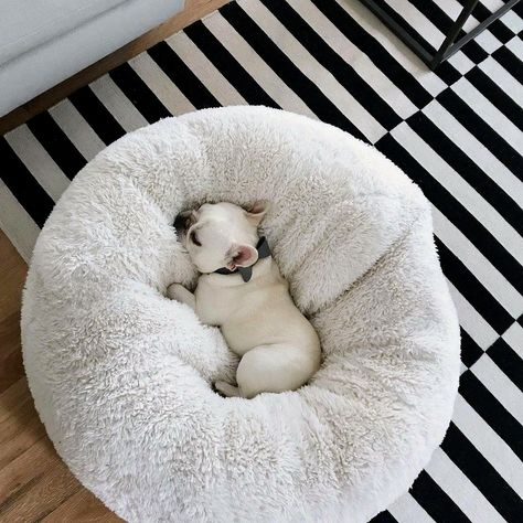 Calming dog bed Australia