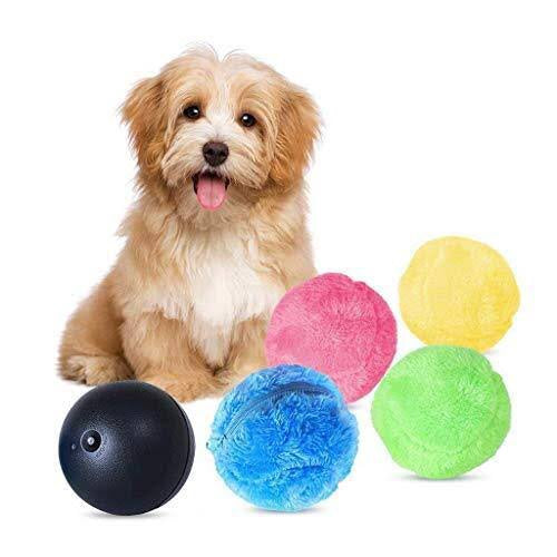 Magic Dog ball