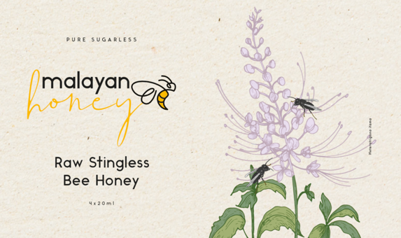 Raw Stingless Bee Honey Trial Set