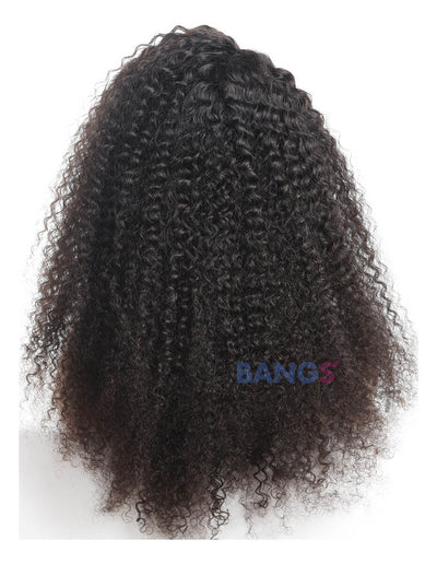 Malaysian Virgin Hair Kinky Curly Lace Front Wig 13x6 Hand Tied