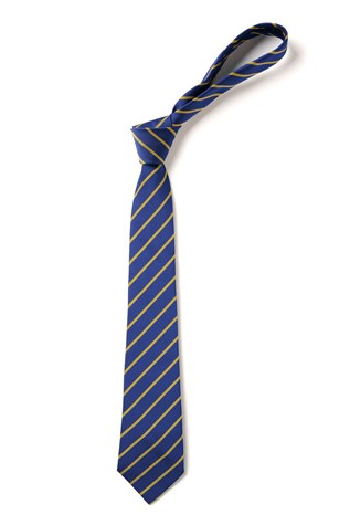 Bishop Wilson C of E Primary School Tie