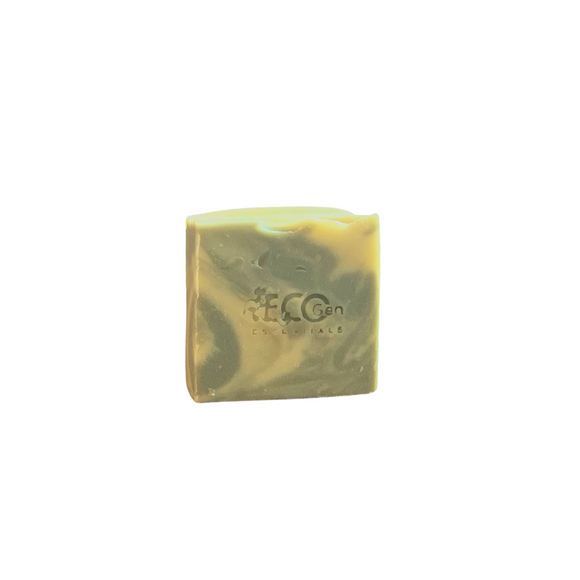 Invigorate Hand & Body Soap