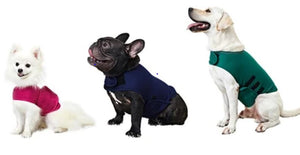 The Doggy Thunder Shirt... A Solution To Your Dog's Fear of Thunder and Fireworks!