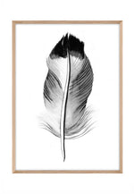 Load image into Gallery viewer, Feather Ink 3
