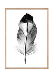 Feather Ink 3