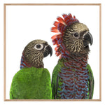 Load image into Gallery viewer, Red Fan Parrot Couple