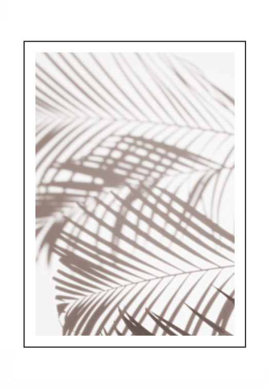 Shadow Palm 1
